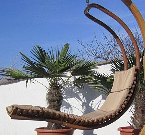 DESIGN Schwebeliege Hängeliege Hängesessel aus Holz Lärche Modell: 'NAVASSA-SEAT' Mit Auflage (ohne Gestell) von AS-S