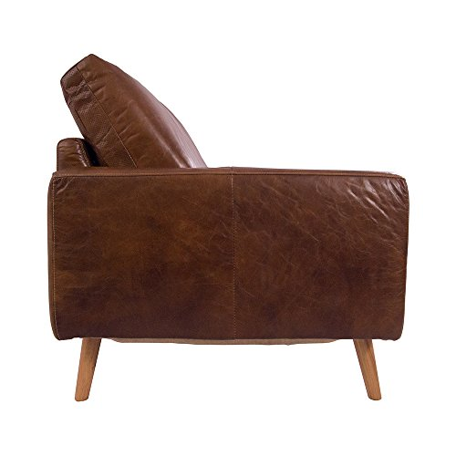 Design Clubsofa Arnum 3-Sitzer Cuba Braun Sofa Ledersofa Loungesofa Designsofa