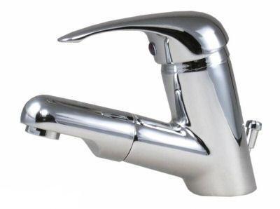 Waschtischarmatur-mit-Brause-als-Einhebelmischer-0